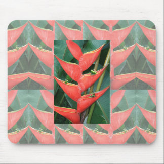 Flowers Heliconia Bamboo from Costa Rica Love Gift Mouse Pad