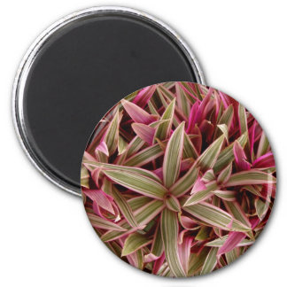 Flowers in bloom 2 6 cm round magnet