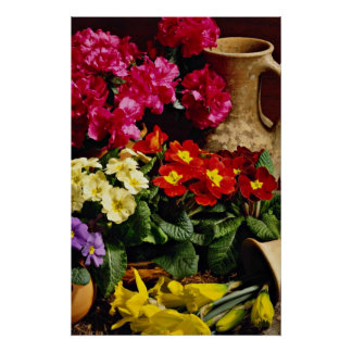 Flowers in brass bowl  flowers poster