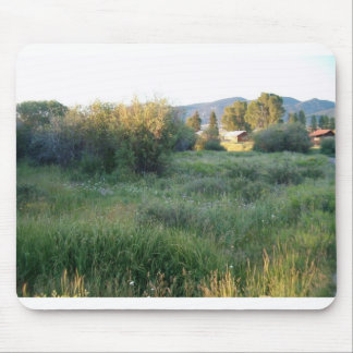 flowers in colorado mouse mats