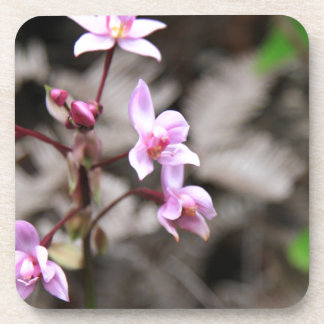 Flowers In Hawaii Coasters