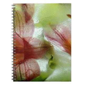 Flowers in ice. Credit as: Dennis Kirkland / Spiral Notebooks
