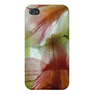 Flowers in ice iPhone 4/4S cover