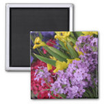 Flowers in Multiple Colours Magnets