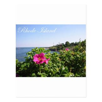 Flowers in Rhode Island Postcard