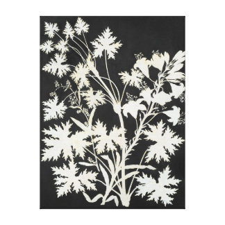 Flowers in Silhouette Canvas Print