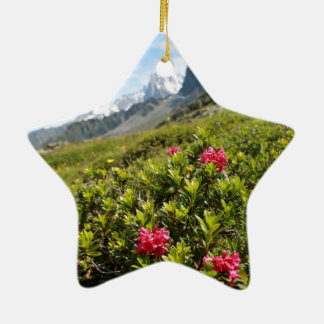 Flowers in the Alps - Beautiful! Christmas Ornaments