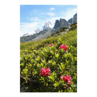 Flowers in the Alps - Beautiful! Stationery