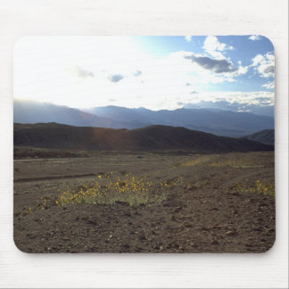 Flowers in the Death Valley Mousepad