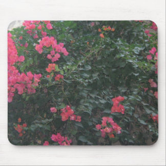 Flowers in the Jewish Quarter Mouse Pad