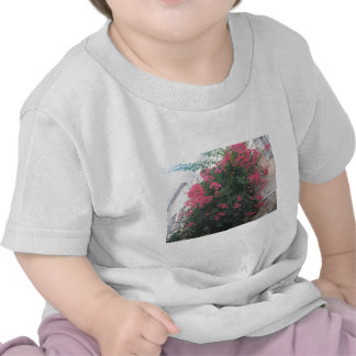 Flowers in the jewish quarter shirt