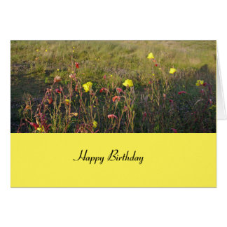 Flowers in the meadow Birthday Card