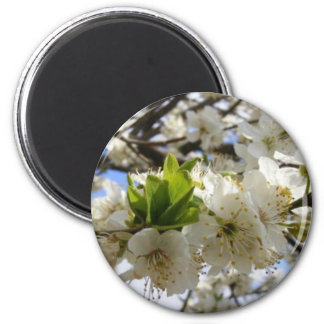 Flowers In White 6 Cm Round Magnet