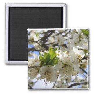 Flowers In White Square Magnet