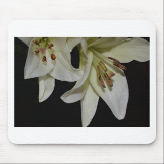 Flowers Lily White Shower Wedding Party Office Art Mousepads