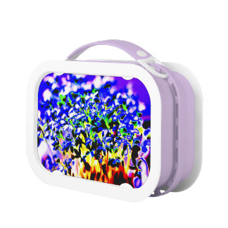 Flowers Lunch Boxes