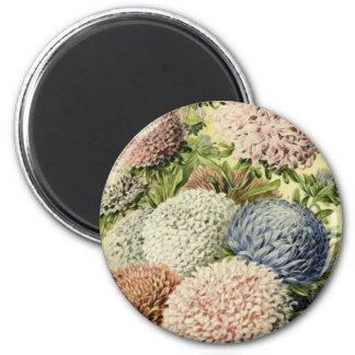 Flowers Magnet