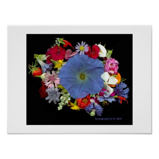 Flowers Make the Circle Poster