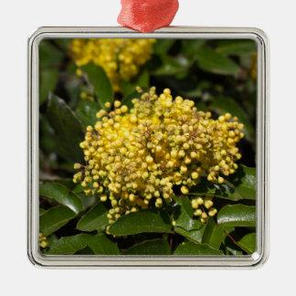 Flowers of a Oregon grape bush Christmas Ornament