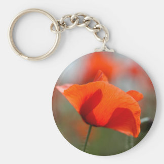 Flowers of common poppy in a field. basic round button key ring