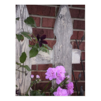 Flowers on Fence Postcard