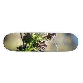 Flowers On Hill Skate Board