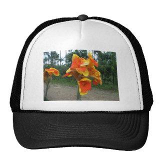 Flowers on plants, Costa Rica. Trucker Hat