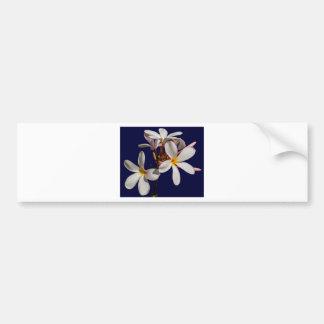 Flowers Peace Blessing Love Park Vines Destiny Bumper Sticker