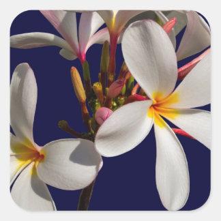 Flowers Peace Blessing Love Park Vines Destiny Square Sticker
