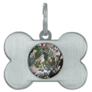 Flowers Pet Name Tag