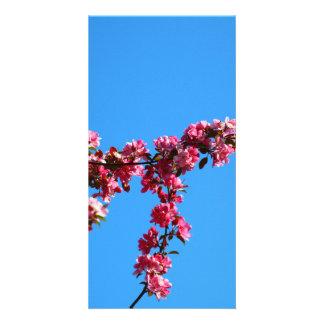 Flowers Customized Photo Card