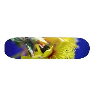 Flowers Plants In Grass Macro Skate Deck