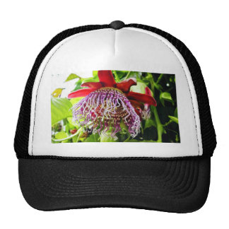 Flowers Plants On Tree Mesh Hat