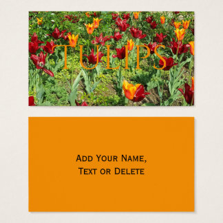 Flowers Red and Orange Tulips Floral Photography Business Card