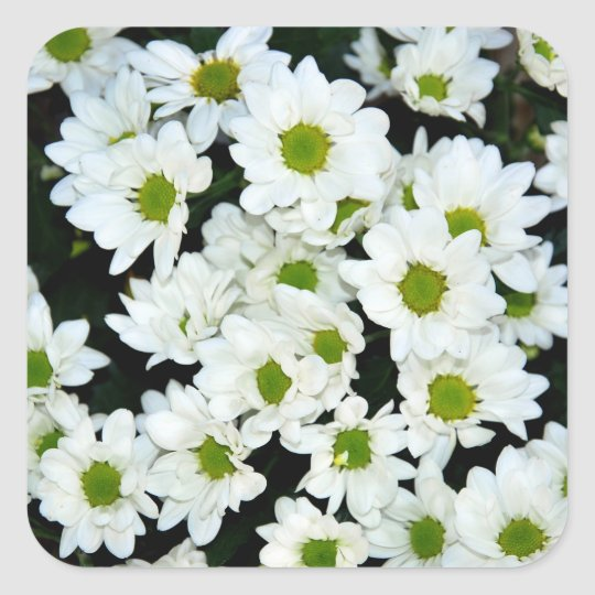 Flowers Square Sticker