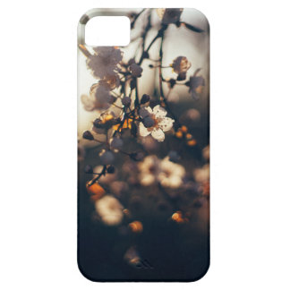 flowers sunset range sunlight iPhone 5 covers