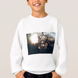 flowers sunset range sunlight sweatshirt