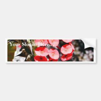 Flowers Throns Plants Bumper Sticker