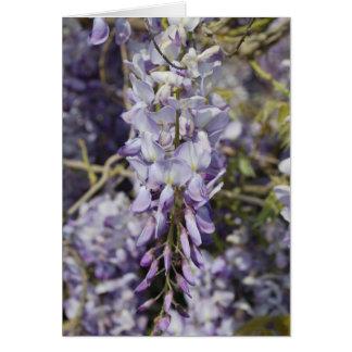 Flowers - Wisteria Card