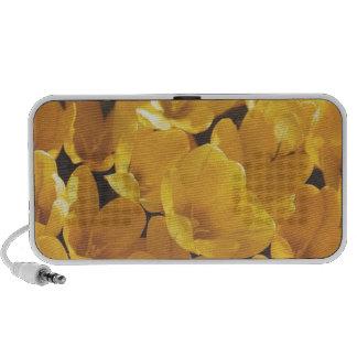 Flowers yellow 15 iPhone speakers