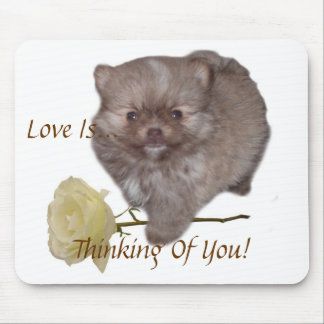 Flowers Zeus Pomeranian  Love Is Thinking Of You!  Mouse Mat