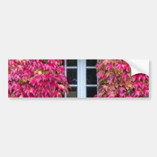 Flowery Pink Window Dulmen Germany Bumper Stickers