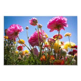 Flowery Skies Photo Art