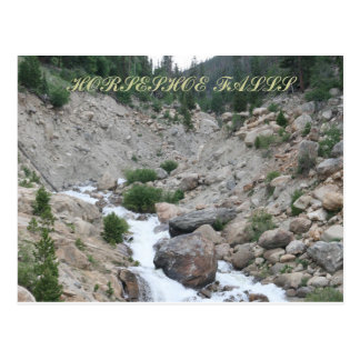 Flowing Freely Postcard