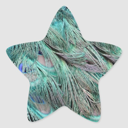 Flowing Green Feathers Hidden Blue Eyes Star Sticker
