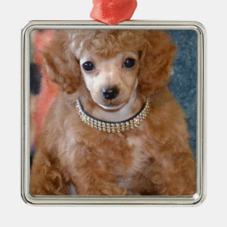 Fluffy Apricot Poodle Puppy Dog Christmas Ornament