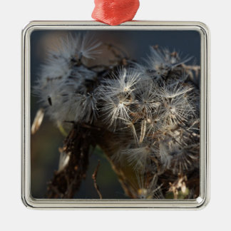 fluffy autumn seeds macro Silver-Colored square decoration