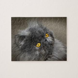 Fluffy Black Cat with Orange Eyes Jigsaw Puzzle