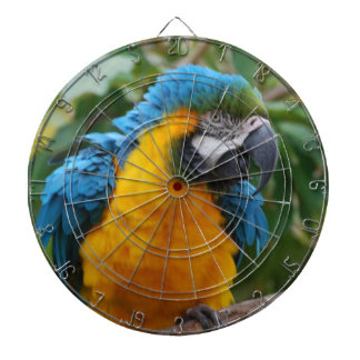 Fluffy Blue and Gold Macaw Dartboards