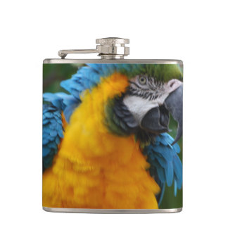 Fluffy Blue and Gold Macaw Flasks